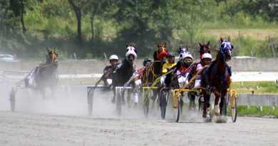 Hipódromo Viracopos sedia Debut de Potros e 1a etapa Copa dos Campeões neste domingo