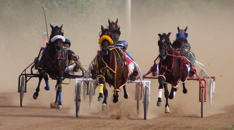 Debut de Potros apresenta tempos surpreendentes no Hipódromo de Viracopos