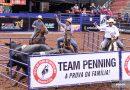 Abertas as inscrições para provas de Team Penning da 64ª Festa do Peão de Barretos